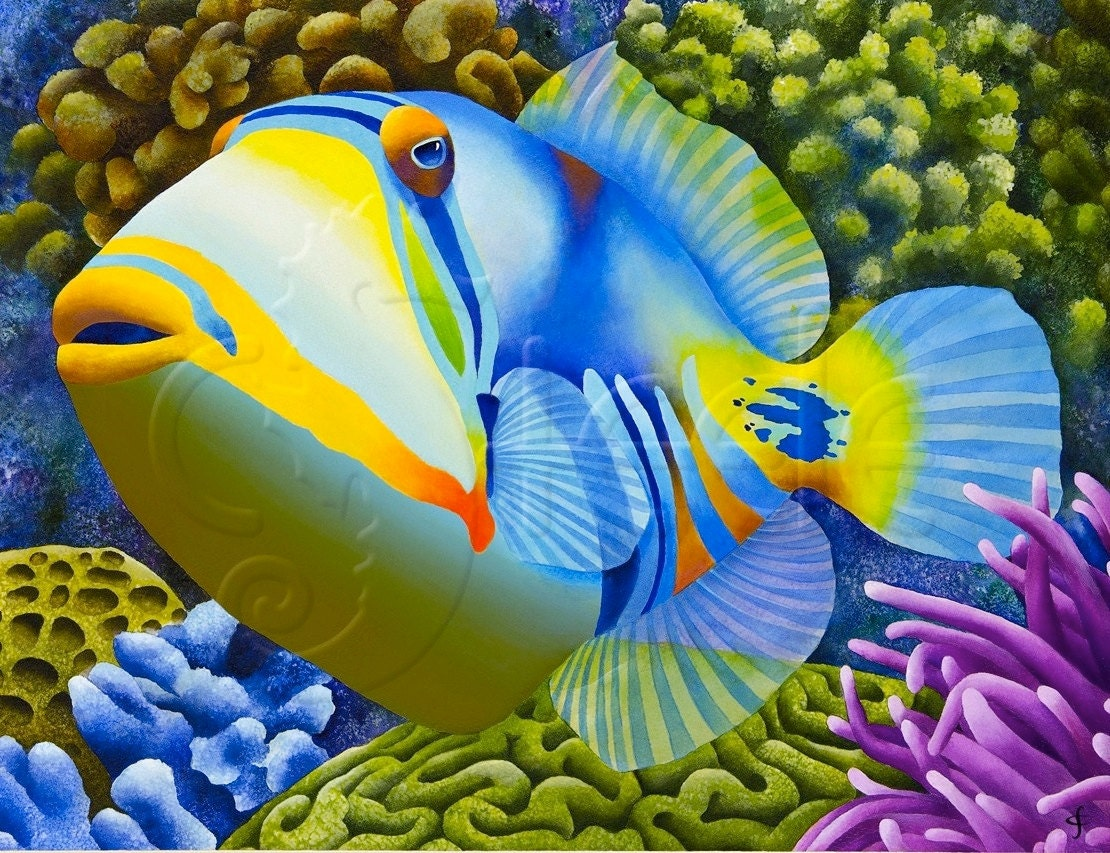 tropical art print picasso triggerfish pablo