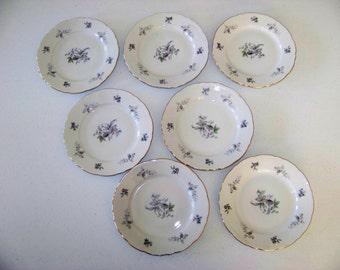 Bohemian Flower Platinum Trim 7 Bread Plates