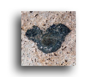 """Mini Valentine Art Print, 4.5"""" wrapped canvas, Mineral Deposit Heart, nature lover"""