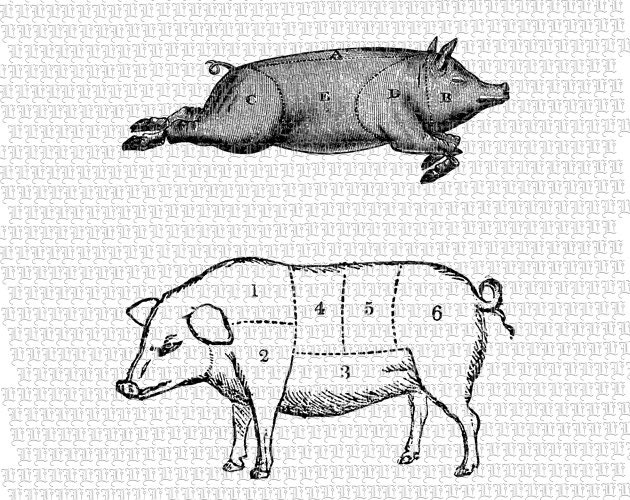 2 Swine Pig Butcher Meat Chart Vintage Clip Art Download ...