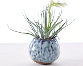 Small Pinched Planter for Air Plants Glaze Opal MADE TO ORDER