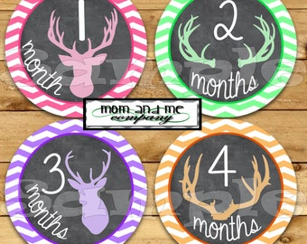 Baby Girl Monthly Stickers Baby Month Milestone Stickers Hunter Deer Antler Baby chalk Stickers Monthly Bodysuit Stickers Woodland Forest