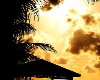 Sunset Palm Gazebo Canvas Print