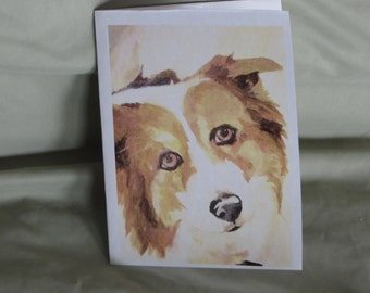 Collie blank note cards