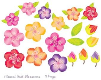 Flowers Clipart Colorful Blossoms Flowers Set