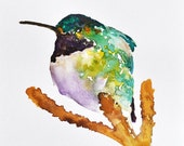 Hummingbird on a branch - ORIGINAL Watercolor Painting  6x8 inch - ArtCornerShop