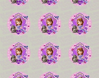 Disney Princess Sofia the First-Inspired Edible Icing Cupcake Decor Toppers - STF1