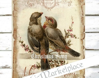 Merry Christmas Birds Large Image Instant Download Vintage Transfer Fabric digital collage sheet printable No. 1280