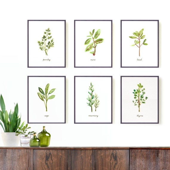 Kitchen art herb print set of 6 8x10 watercolor art by for Art prints for kitchen wall