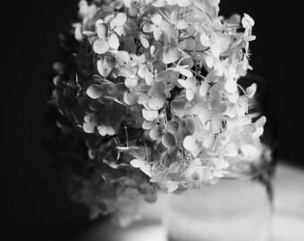 Black and White Photography, Flower Photography, Hydrangeas, Dreamy Flower Print, Elegant Home Decor, Bedroom Decor, Bath Art, Spa Art