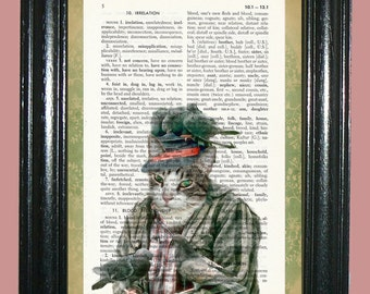 Tabby Cat with Pigions sitting on him Dictionary Page Art Dictionary Print Page Art Print Upcycled Art Print cp471