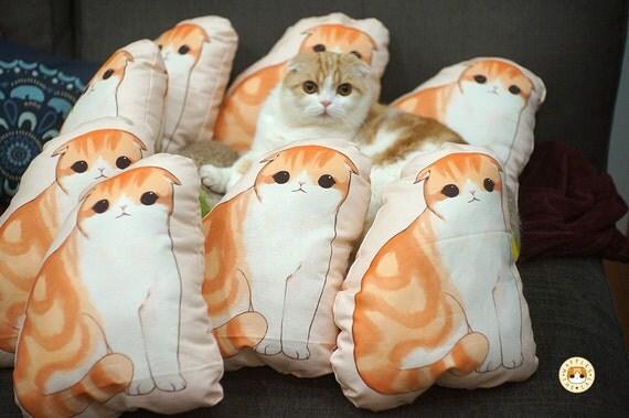 Items similar to Waffles The Cat Scottish Fold Pillow Cushion Plush on Etsy