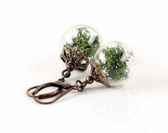 Genuine Moss Earrings - E056