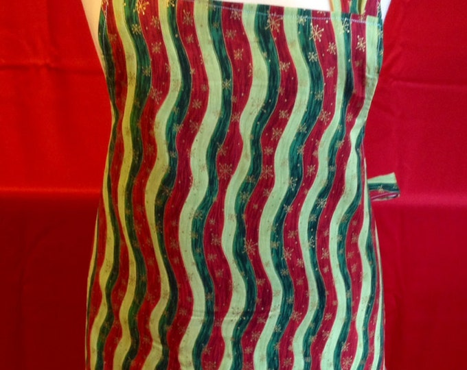 Reduced !!! Winter and Fall Apron for any festivity