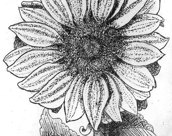 Sunflower - Hand Printed,  Black & White  Original Intaglio Etching and Engraving, Limited Edition, Flower, Botanical, Print