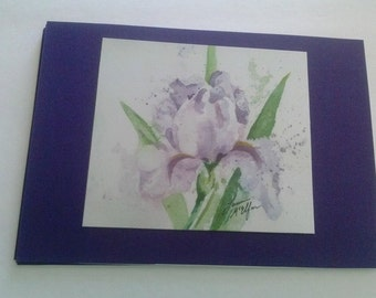 Watercolor Iris Greeting Cards set of 4 with envelopes