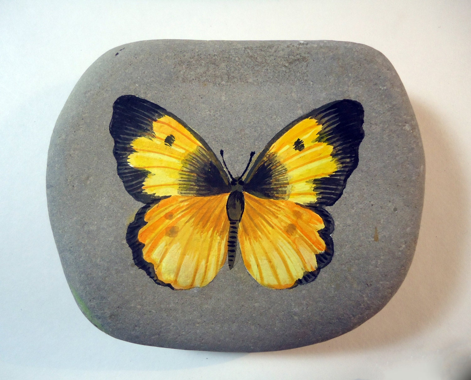 Realistic butterfly paintings - photo#28