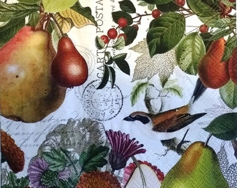 TWO (2) Golden Pear, Birds, Luncheion Napkins for Decoupage and Paper Crafts