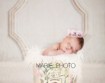 Instant Download! Newborn prop digital backdrop! Very easy to use! Looks very realistic!