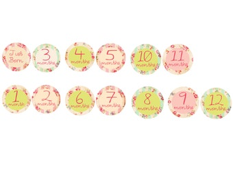 Baby Girl Monthly Stickers / vintage / shabby chic flowers