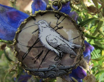 Victorian Brass Pendant with Raven Image Under Polished Glass