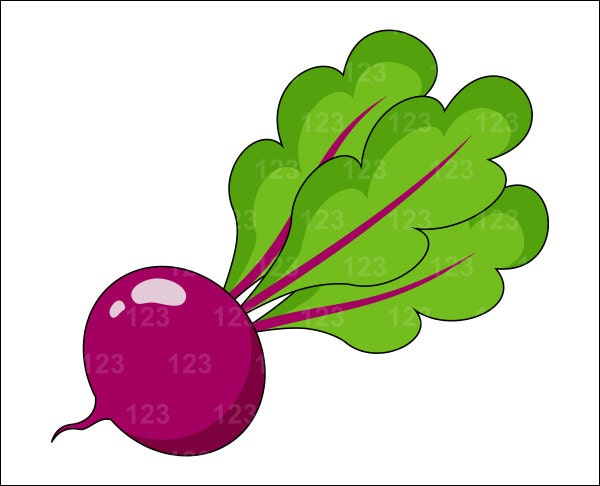 Items similar to Vegetable Beet Beetroot Single Digital ...