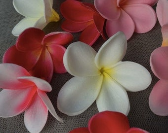 Natural Real Touch White Artificial frangipani Plumeria flower heads for cake decoration