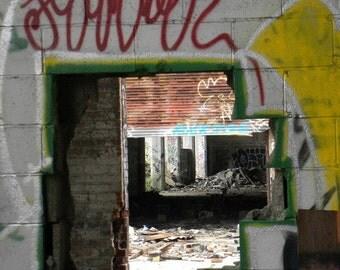 Through Walls~ **Art**Detroit**Unedited**Wall Art* *Office Art**Photography**Print**  **Decor**Design**Photographic Art** *Packard Plant*
