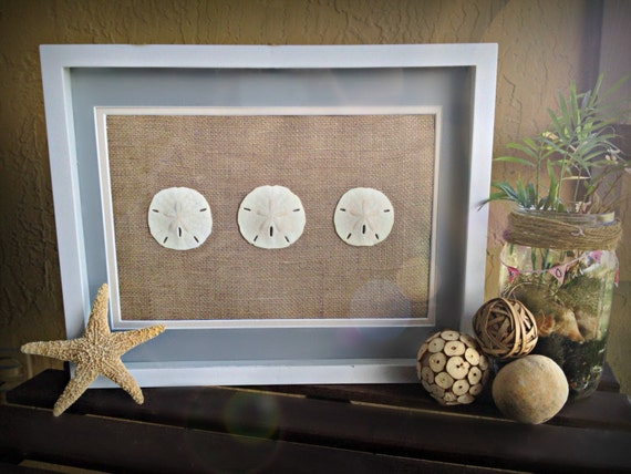 sand dollar wall art white shadow box 12x15 frame burlap and blue border