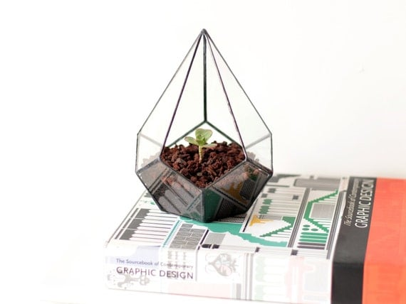 Geometric Terrarium / Teardrop / Handmade Glass Terrarium / Modern Planter for Indoor Gardening / Glass Planter / Stained Glass Terrarium
