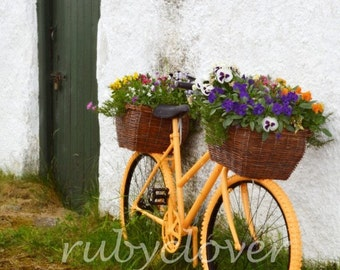 Orange Bicycle with Flowers, DONEGAL, Gaeltacht , Irish Countryside, Glenveagh, Quintessential Old IRELAND Photo, EUROPEAN Decor, Gweedore