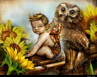 fairy pictures -Hoot...Child Fairy Picture Art... Print... Fantasy Art... Little Fairy Boy... Owl... Fairy Pictures