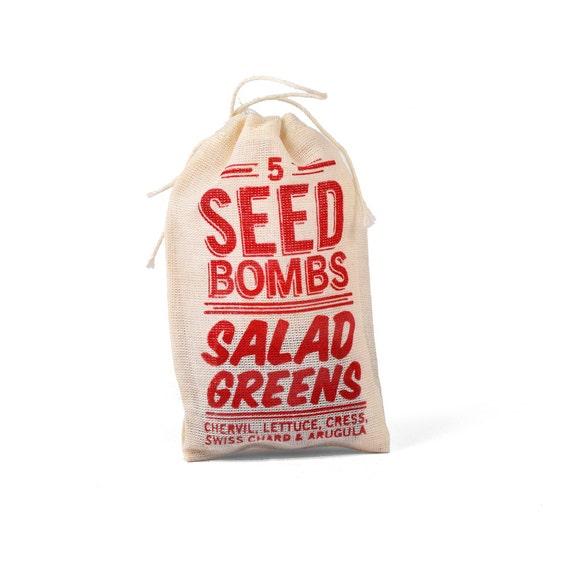 Salad Greens Seed Bombs - Edible Indoor or Outdoor Gardening