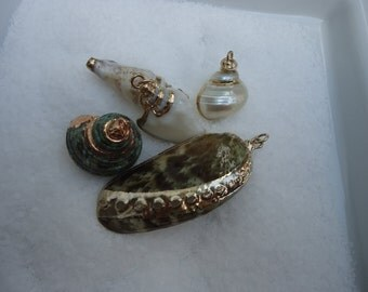 Assortment of 5 Seashells Pendents
