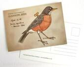 American Robin postcard - Clockwork Bird steampunk illustration print