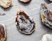 Rough Druzy Agate Jasper Druzy focal Beads - RARE Half Eggs - Geode Eggs