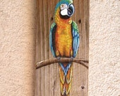 Parrot Plaque Hand Painted on Reclaimed Fence Board (Custom Order Only)
