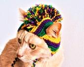 Mardi Gras Dog Costume - Hand Knit Dog Hat - Custom Sizing