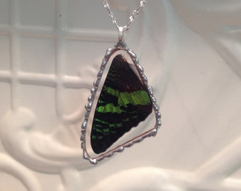 Real Butterfly Wing  Pendant Madagascan Sunset Moth Between Glass Hand Soldered  Birthday Gift 24 inch chain
