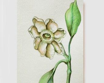 Original watercolor flower drawing on paper. Pink, beige, green, art flower, pencil, charcoal, sennelier paper, modern, painting