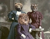 Vintage Animal 5x7 Print - Anthropomorphic - Altered Photo - Lions, Tigers, and Bears, Wizard of Oz, Collage Art, Funny Animal Print - Art