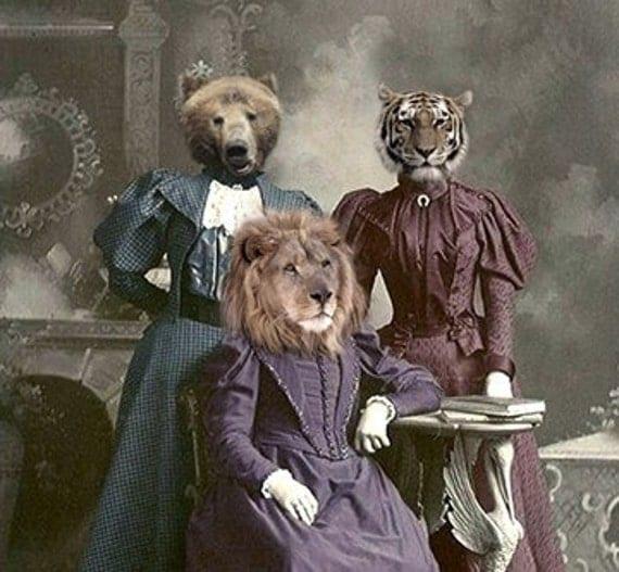 Vintage Animal 5x7 Print Anthropomorphic Altered Photo