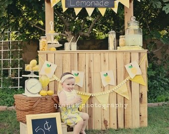Lemon Banner, Lemonade stand Banner canvas lemonade stand garland pennant, Summer props, lemonade banner prop -yellow,green- Made to Order