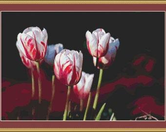 Garden Tulips Cross Stitch Pattern