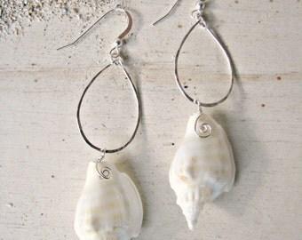 Hawaii Shell Hoops, Seashell Earrings, Beachy Earrings, Hammered Silver Teardrop Hoops, Hawaiian Earrings, Beach Wedding, Bridesmaid Gift