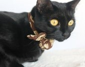 Brown Cat Collar Accessory with Bowtie