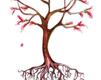 Cherry Blossom Tree Fine Art Print