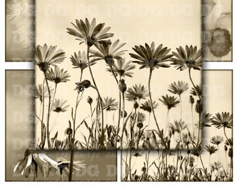 Sepia Flowers 4x4 inch tiles Digital Collage Sheet for Coasters Magnets Greeting Cards Scrapbooking, Stickers, Instant Download Sheet 257