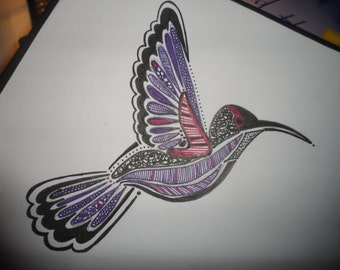Hand drawn hummingbird