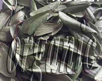 Cowberry leaves. Dried. Organic herbal tea 40g.